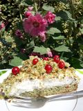 Delicious cake berry on the garden. When you feel like a moment of forgetfulness Stock Images