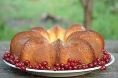 A delicious cake home Stock Photos