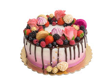 Delicious cake made from fruits and chocolate. Stock Photos