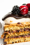 Delicious cake slice Royalty Free Stock Photos