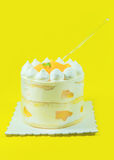 The delicious cake Stock Images