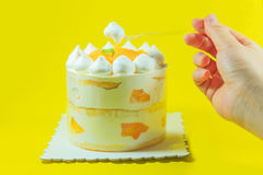 The delicious cake Royalty Free Stock Photography