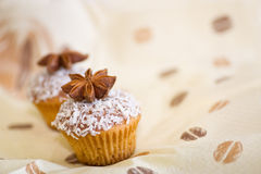 Delicious cakes with anise. And coconut Royalty Free Stock Photo