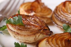 Delicious caramelized onion on a white plate macro. Horizontal. Delicious caramelized onion with parsley on a white plate macro. horizontal royalty free stock image