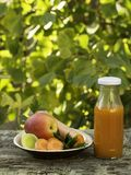 Delicious carrot and apple juice from fresh fruits and vegetables.  stock image