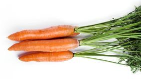 Delicious carrot Royalty Free Stock Images
