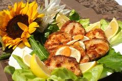Delicious catfish escalope Royalty Free Stock Photography