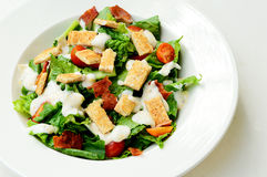 Delicious ceasar salad. Isolate on white background Royalty Free Stock Image