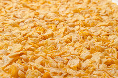 Delicious cereals Stock Images