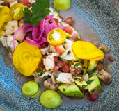 Delicious ceviche mixto mexican style stock images