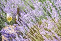 Delicious champagne over lavender. stock photo