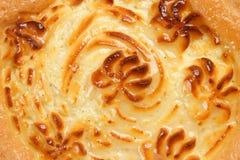 Delicious cheese pie stock photos