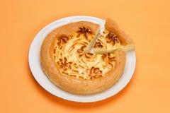 Delicious cheese pie Stock Image