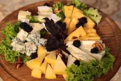 Delicious cheese plate Stock Images