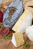Delicious cheese variation. Delicious cheese variation on wooden board with grapes and fresh herbs stock photo