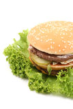 Delicious cheeseburger Royalty Free Stock Photo
