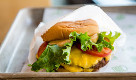 Delicious Cheeseburger on Tray Stock Images