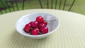 Delicious cherries in a white bowl. With two chairs and a green garden in the background stock video
