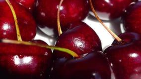 Delicious cherry berries in focus stock video footage
