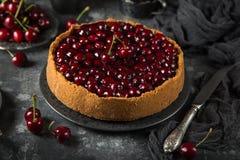 Delicious cherry cheesecake Stock Image