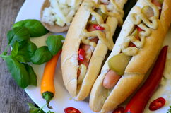 Delicious Chicago style hot dog on wooden background Stock Image