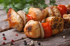 Delicious chicken barbecue on wooden skewers with vegetables Stock Images
