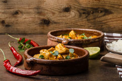 Delicious chicken curry stock images