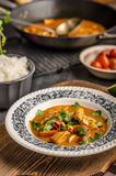 Delicious chicken curry with vegetable stock image
