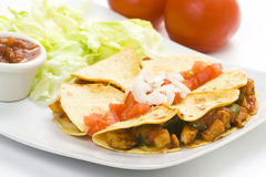 Delicious chicken quesadilla and fresh vegetables Royalty Free Stock Image
