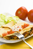 Delicious chicken quesadilla and fresh vegetables. Isolated Royalty Free Stock Photography
