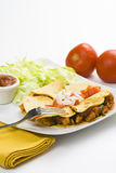 Delicious chicken quesadilla and fresh vegetables. Isolated Stock Photos