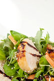 Delicious chicken salad isolated. Royalty Free Stock Photography