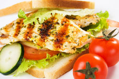 Delicious chicken sandwich Stock Images