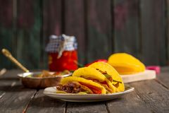 Free Delicious Chicken Tacos Royalty Free Stock Image - 101919136