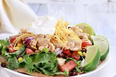 Delicious Chicken Tostadas Royalty Free Stock Photo
