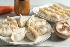 Delicious chinese dumpling on the white table. The homemade traditional chinese food dinner meal steamed asia plate lunch wrapped stuffed jiaozi new gourmet stock photography