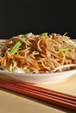 Delicious chinese noodles Royalty Free Stock Photography