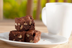 Delicious chocolate brownie with pecan and walnut. Royalty Free Stock Image