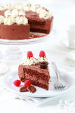 Delicious chocolate cake Royalty Free Stock Photo