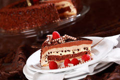 Delicious chocolate cake Stock Images