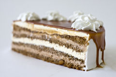 Delicious chocolate cake. Close up of delicious layered chocolate cake decorated with cream Stock Images