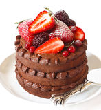 Delicious chocolate cake. Royalty Free Stock Photography