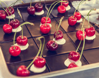 Delicious chocolate cake with fresh cherries. Tasty pastry on a platter Stock Image