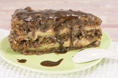 Delicious chocolate cake with walnuts Royalty Free Stock Photography