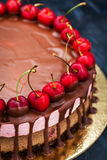 Delicious chocolate and cherry cheesecake dessert decorated with Stock Photos