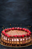 Delicious chocolate and cherry cheesecake dessert decorated with Royalty Free Stock Images