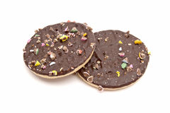 Delicious chocolate cookie Stock Image