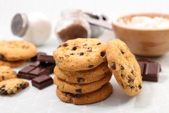 Delicious chocolate cookie. And ingredient Stock Images