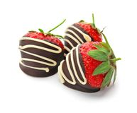 Delicious chocolate covered strawberries. On white background stock photography