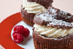 Delicious chocolate and cream muffins Stock Photography